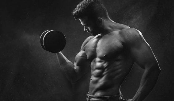 Kto powinien korzystać z odżywek białkowych?